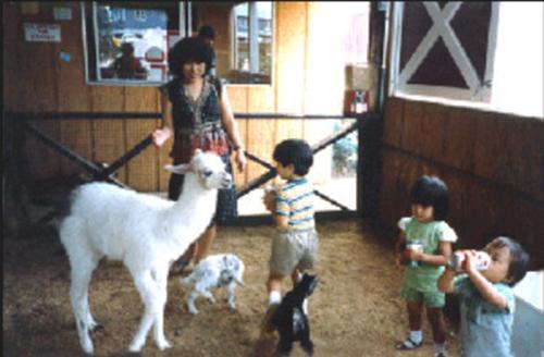 Choi family 1982.jpg